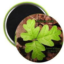 Poison Oak Magnet