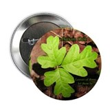 Poison Oak 2.25&quot; Button (10 pack)