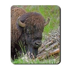 Buffalo Wood Pile Mousepad