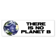 No Planet B Bumper Sticker (10 pk)