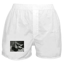 Crystal Boxer Shorts