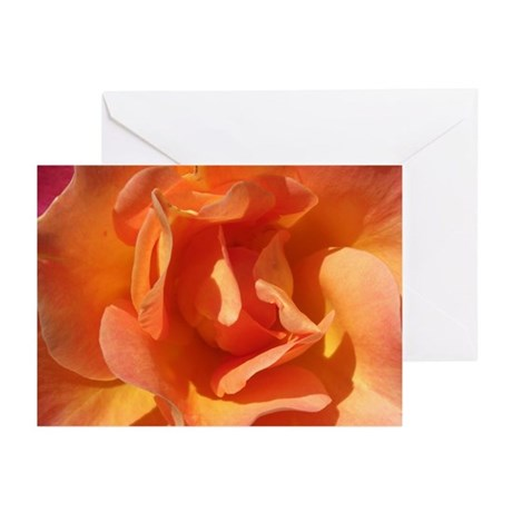 Rose Close Up Greeting Cards (Pk of 10)