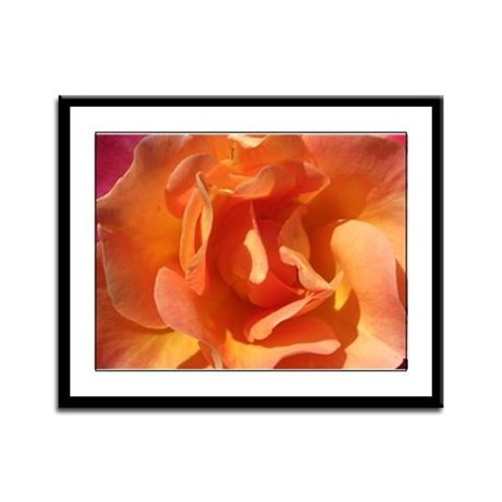 Rose Close Up Framed Panel Print