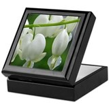 White Bleeding Hearts Keepsake Box