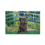 Bridge /Cairn Terrier (w) Rectangle Magnet