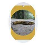 Banana Slug in Forest Oval Ornament