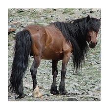 Mongolian Horse Tile Coaster