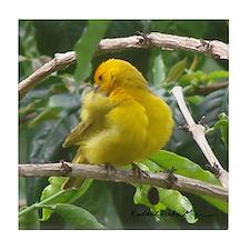 Hawaiian Yellow Finch Coaster