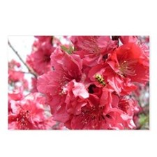 Pink Tree Postcards (Package of 8)