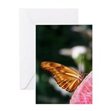 Dryas julia Butterfly Greeting Card