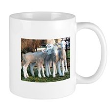 Cute Sheep and lamb Mug