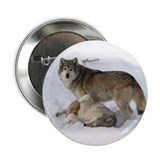 Domination Wolves 2.25&amp;quot; Button (10 pack)