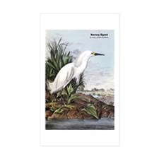 Audubon Snowy Egret Bird Rectangle Sticker 10 pk)