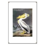 Audubon American White Pelican Banner