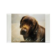 Chocolate Lab Rectangle Magnet (10 pack)