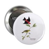 "Audubon Scarlet Tanager Birds 2.25"" Button"