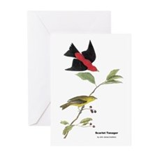 Audubon Scarlet Tanager Birds Greeting Cards (Pk o