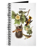 Audubon Northern Oriole Birds Journal
