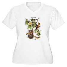 Audubon Northern Oriole Birds T-Shirt