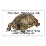 Valuable Pet Lesson #6 Rectangle Sticker