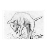 A Bull Terrier Postcards (Package of 8)