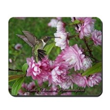 Male Hummingbird Mousepad