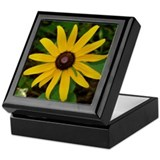 Black Eye Flower Keepsake Box