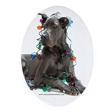 Cute Great dane Oval Ornament