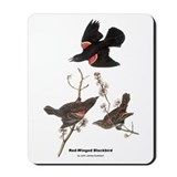 Audubon Red-Winged Blackbird Mousepad