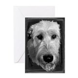 Irish Wolfhound B&W Greeting Card -#12