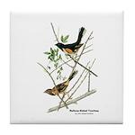 Audubon Towhee Bird Tile Coaster