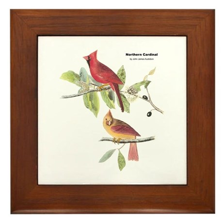 Audubon Northern Cardinal Bird Framed Tile
