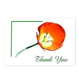NOTE CARD STORE: Poppy Postcards (Package of 8)