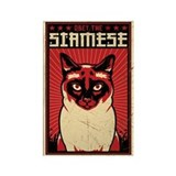 SIAMESE Dictator Cat Magnets (10 pack)