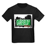 GARFIELD PL, BROOKLYN, NYC T