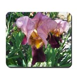 Dutch Iris Mousepad