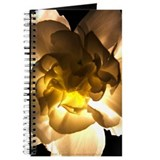 White Carnation Journal