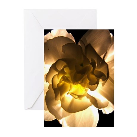 White Carnation Greeting Cards (Pk of 10)
