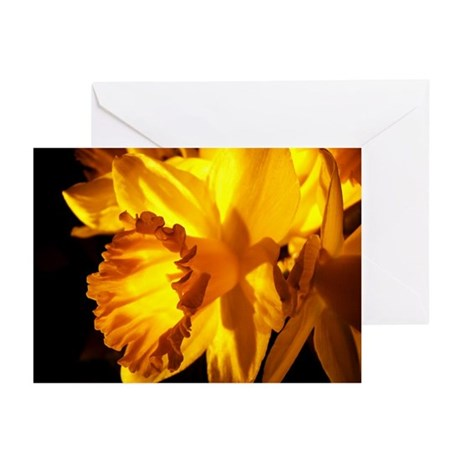 Yellow Daffodil Greeting Cards (Pk of 10)
