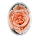 Peach Rose Keepsake (Oval)