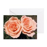 Peach Rose Greeting Cards (Pk of 10)