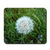Dandelion Seed Head Mousepad