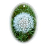 Dandelion Seed Head Keepsake (Oval)