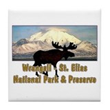 Wrangell - St. Elias National Tile Coaster