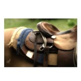 Western Saddle Postcards (Package of 8)