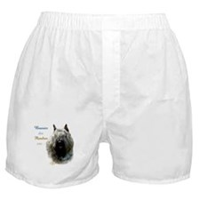 Bouvier Best Friend1 Boxer Shorts