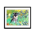 Irises / Miniature Schnauzer Framed Panel Print
