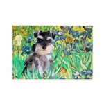 Irises / Miniature Schnauzer Rectangle Magnet (100