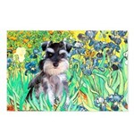 Irises / Miniature Schnauzer Postcards (Package of