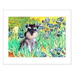 Irises / Miniature Schnauzer Small Poster